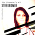 cover: streubombe-2013